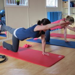 Specialised physio led Mat pilates classes for all levels in Newcastle Co.Dublin.